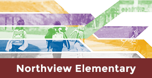 Northview Elementary School Safe Routes to School Plan